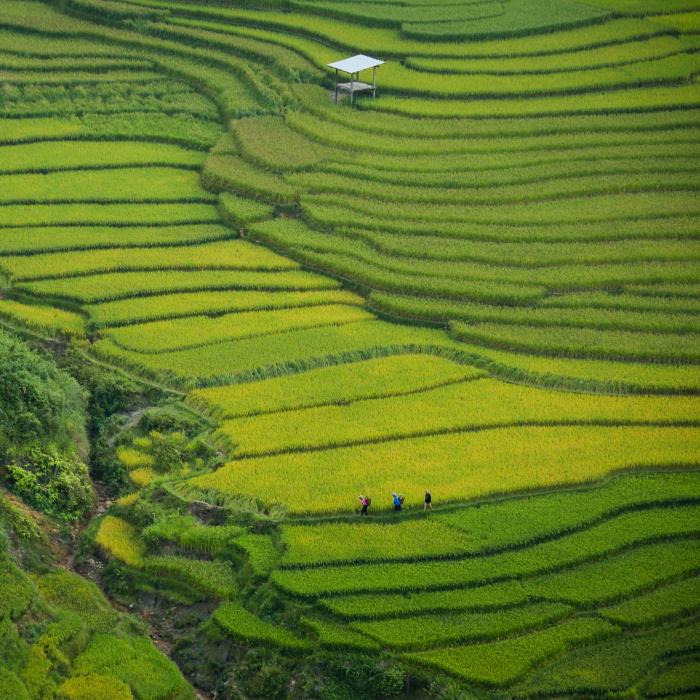 northern vietnam
