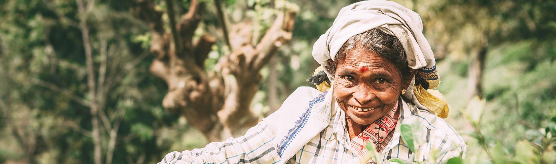 Women, Tea plantations, Sri Lanka