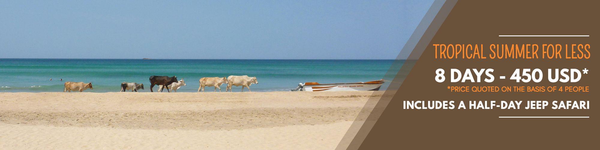 sri-lanka-east-coast-attractions
