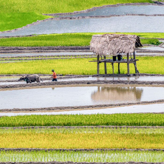 Countryside, Pu Luong, Vietnam