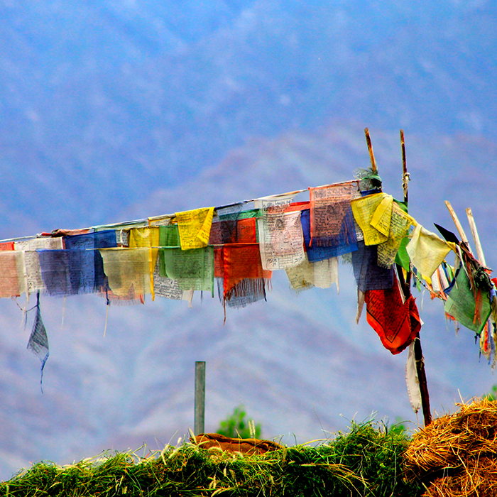 Amrita Ghanty, Leh, Ladakh, India