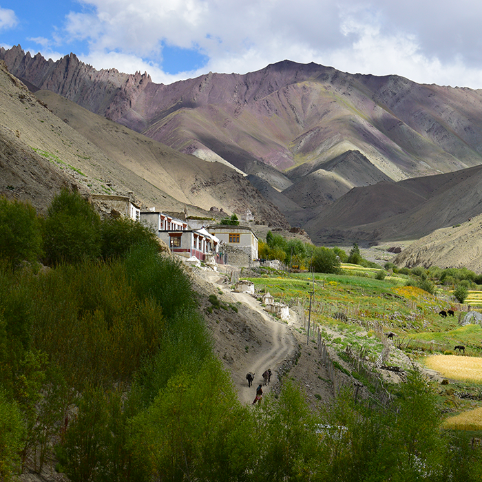 India, Ladakh, Rumbak, Mountains
