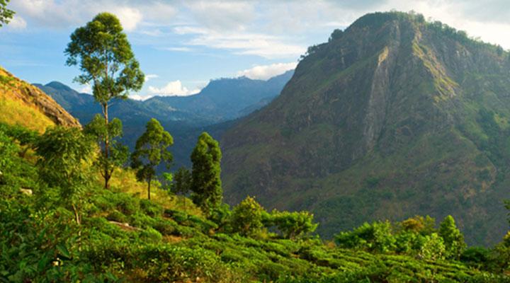Little Adam's Peak & Ravanna Cave