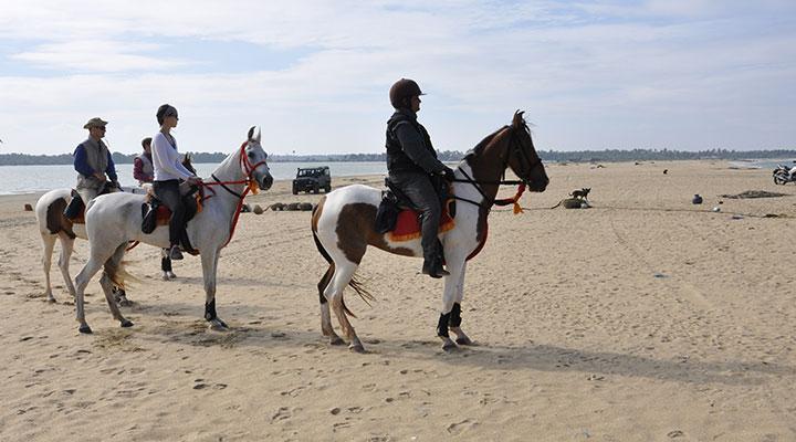 Horseback riding on the beach sri lanka