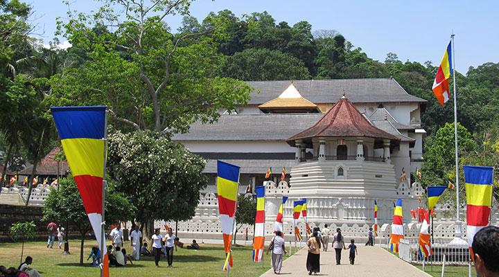 Kandy City Sightseeing