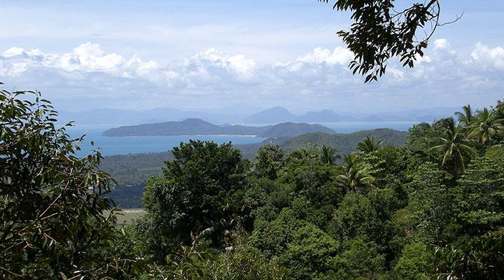 Free day in Koh Samui