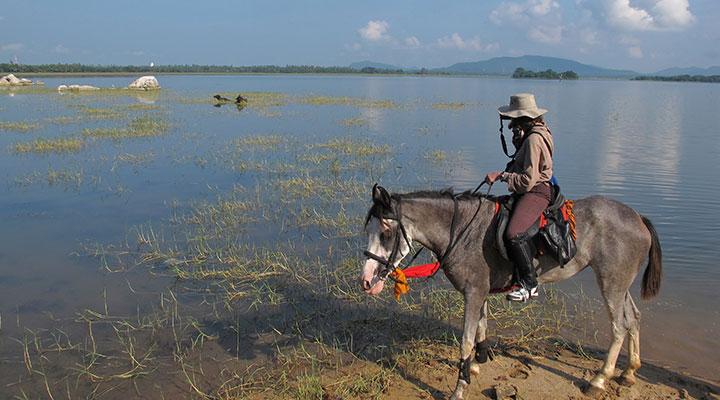Horseback in sri lanka