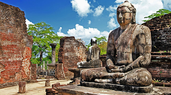Day trip to Polonnaruwa & elephant safari