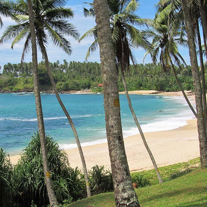 Beach, Sri Lanka