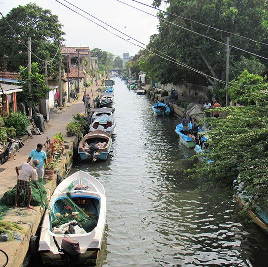 Lagoon, boat, safari, Negombo, Sri Lanka