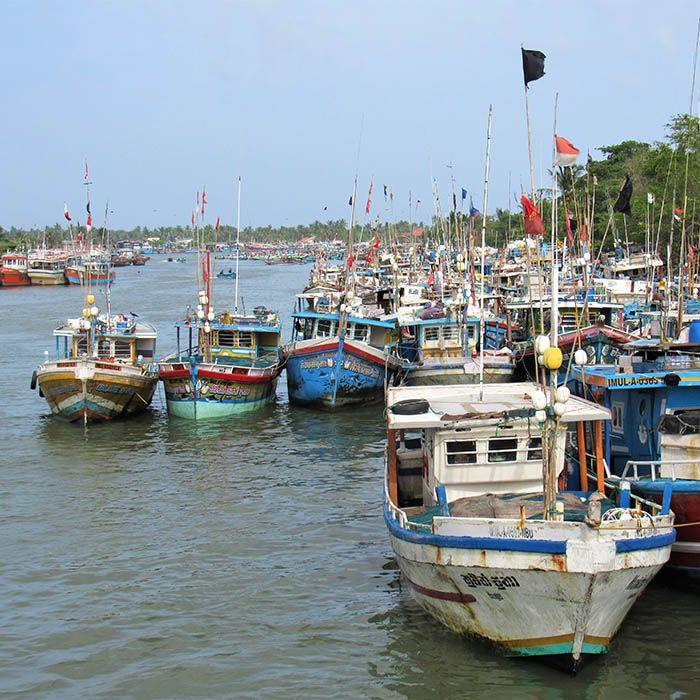 Boats, Negombo, Sri Lanka