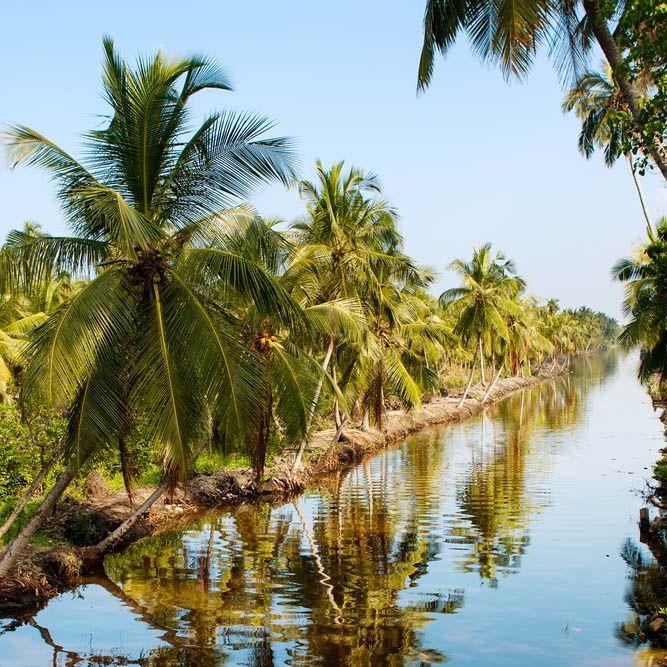 Boat trip, Muthurajawela Marsh Nature Reserve, Sri Lanka