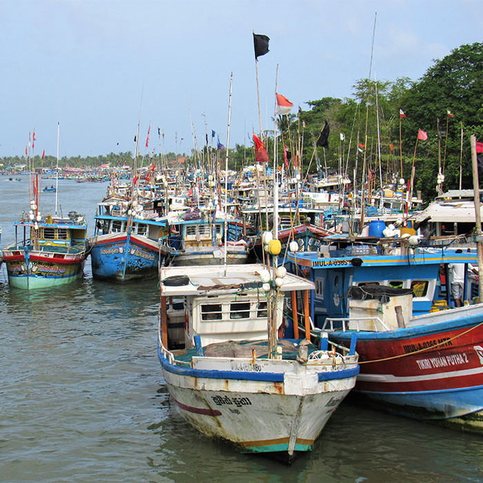 Harbour, Negombo, Sri Lanka