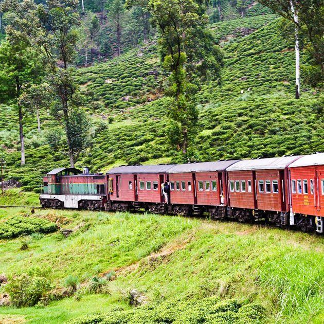 Train, Ella-Nuwara Eliya, Sri Lanka