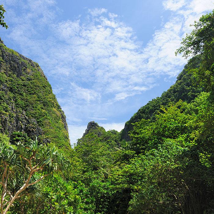 Trekking, Koh Chang, Thailand