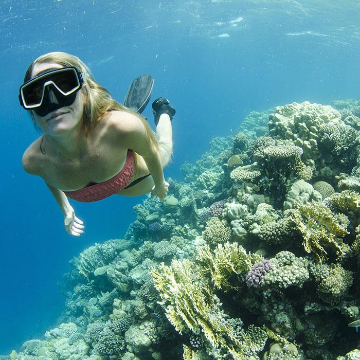 Snorkeling, Islands, Thailand