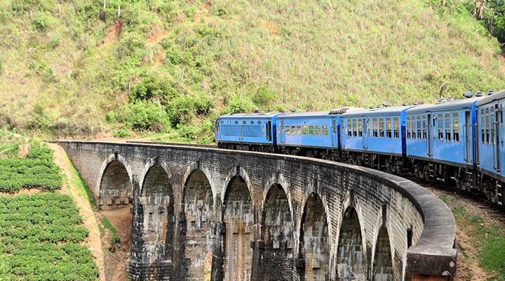 Scenic train ride & tea estates