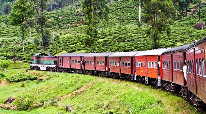 Train to Nanu Oya