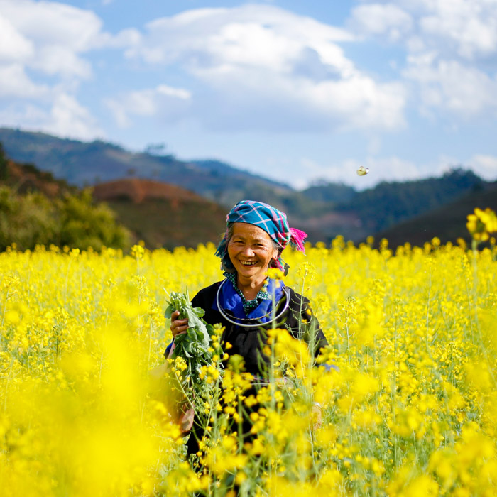 Vietnam, Sapa, Hmong woman