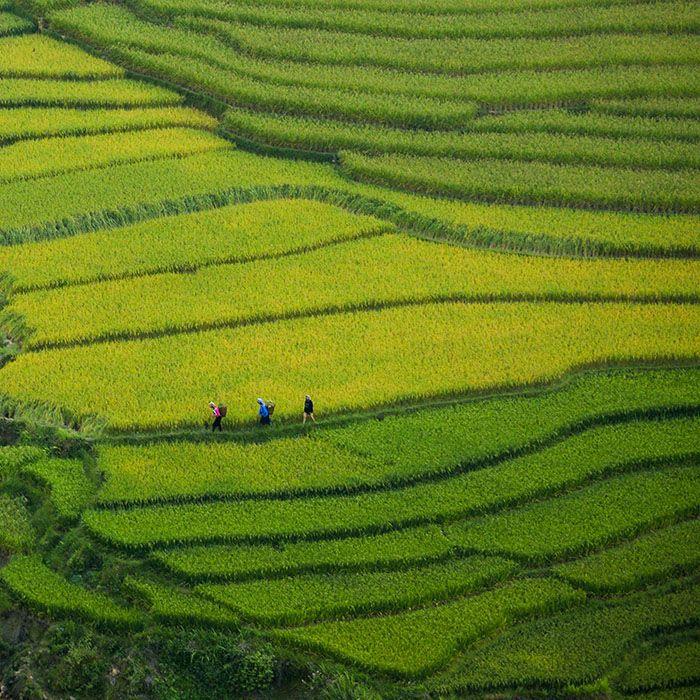 Trek, Nam Anh, Na Chi, Vietnam