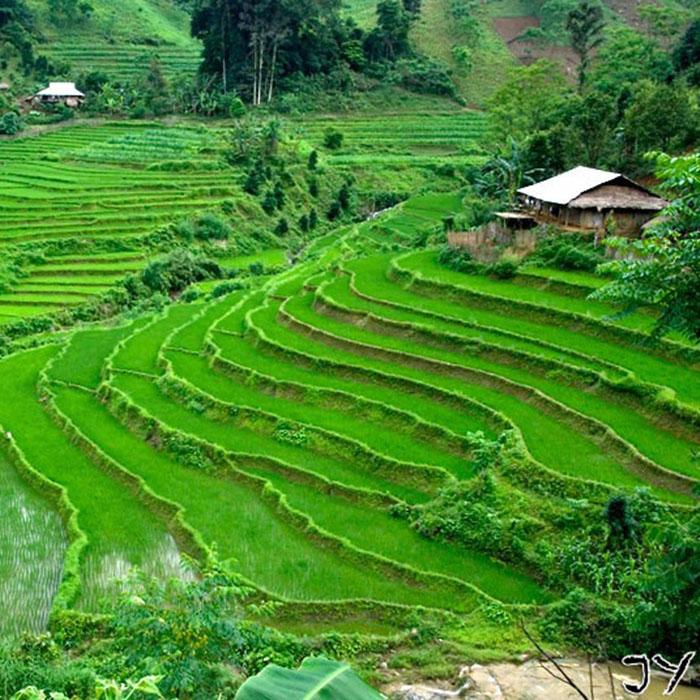 Pu Luong Valley, Vietnam