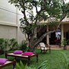 Guesthouse/ Homestay