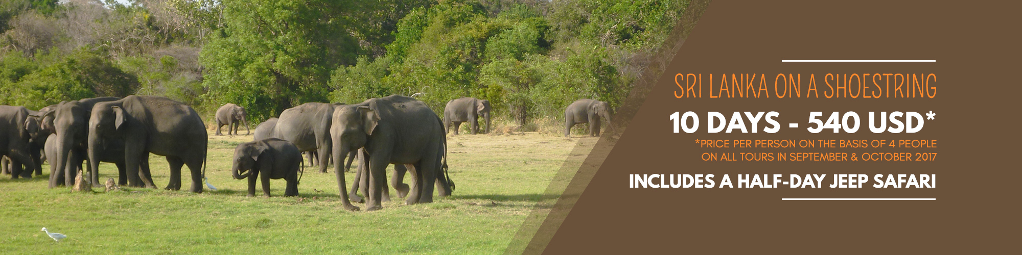 Nature & Wildlife Tours in Sri Lanka