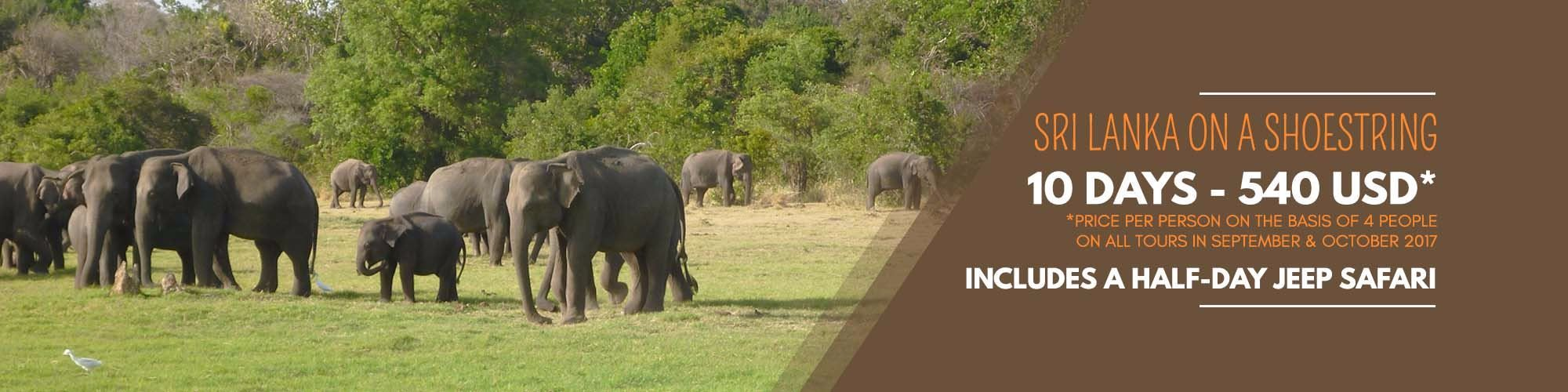 Deal tour packages in Sri Lanka