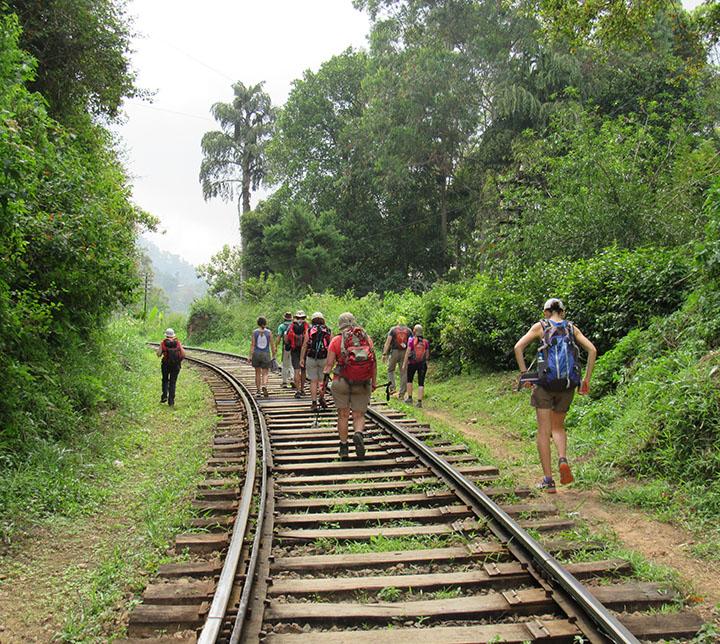 Sri Lanka, Ella Rock, Trekking