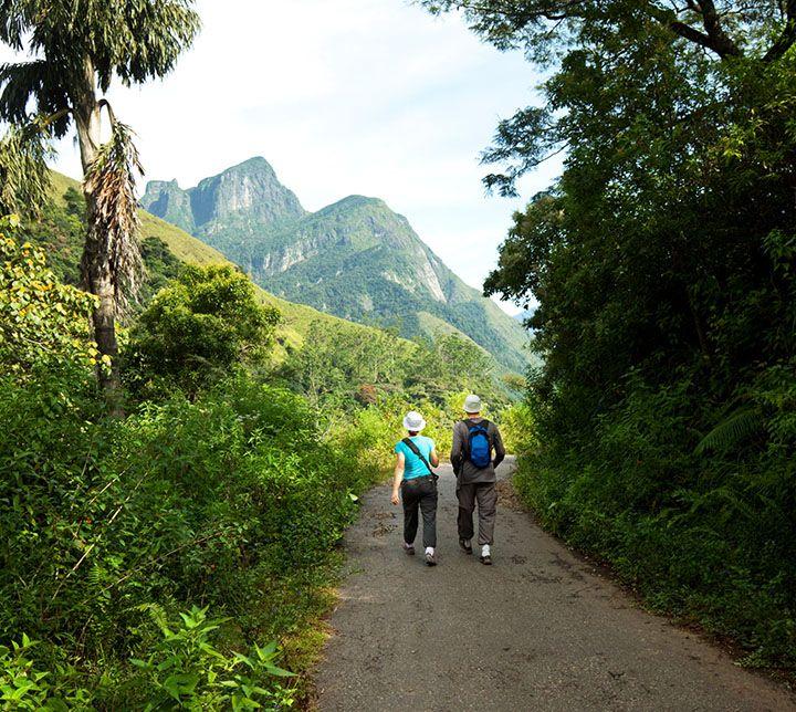 Sri Lanka, Guided trek, Forests