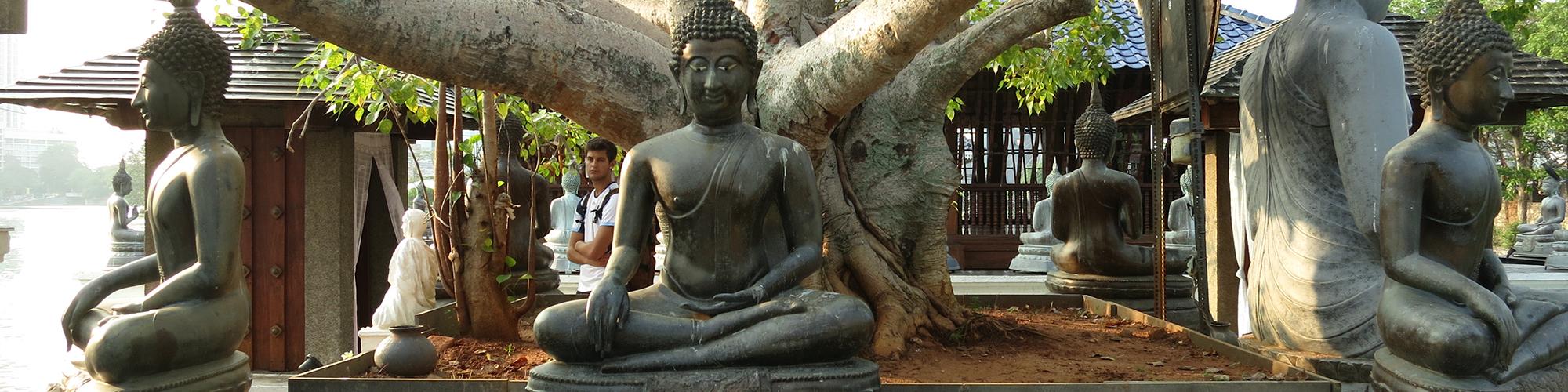 Buddha-statues-in-Sri-Lanka