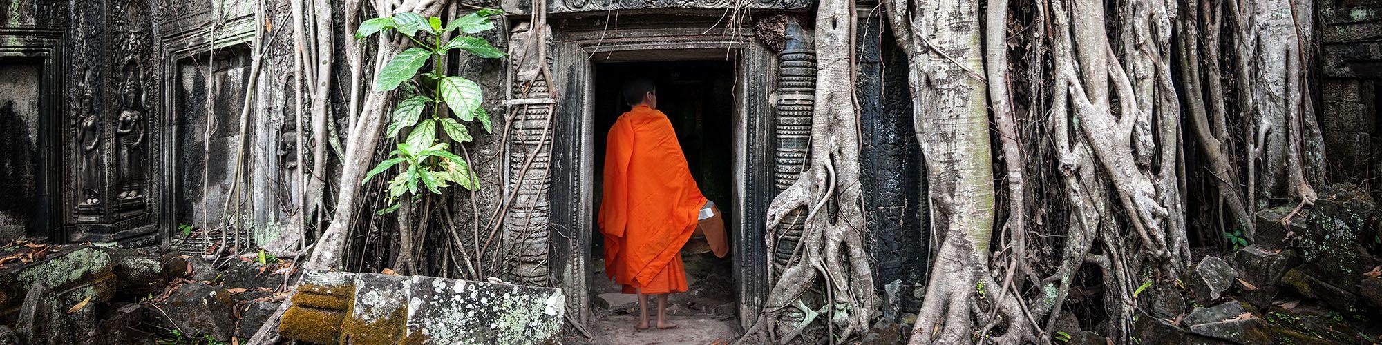 Cambodia, Monk, Angkor Ta Prohm