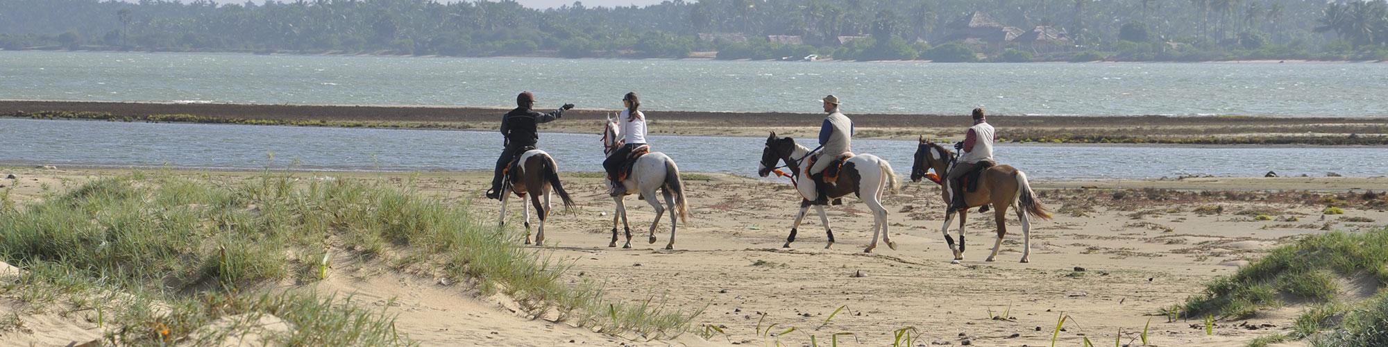 Horseback riding on the beach