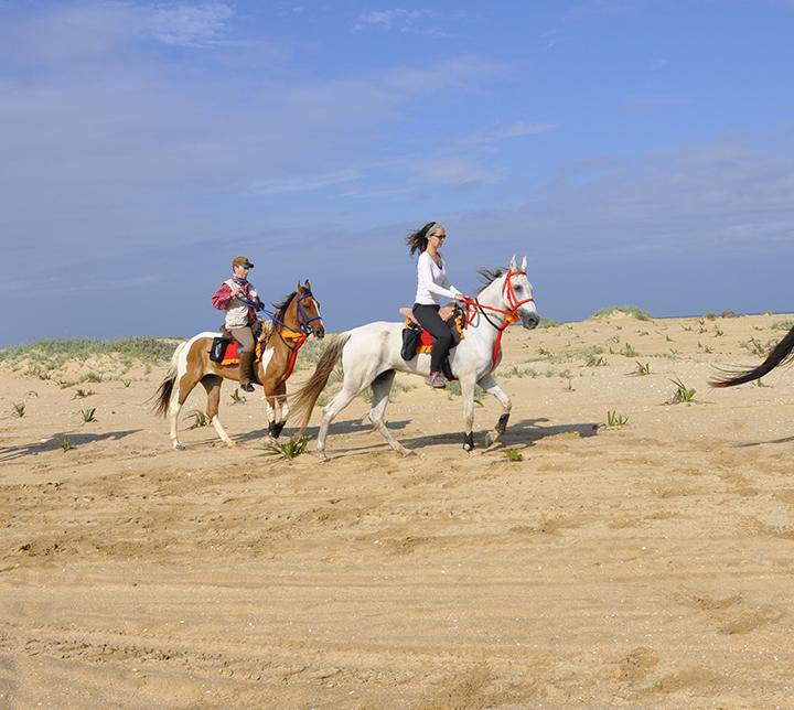 Horse riding tour in Sri Lanka
