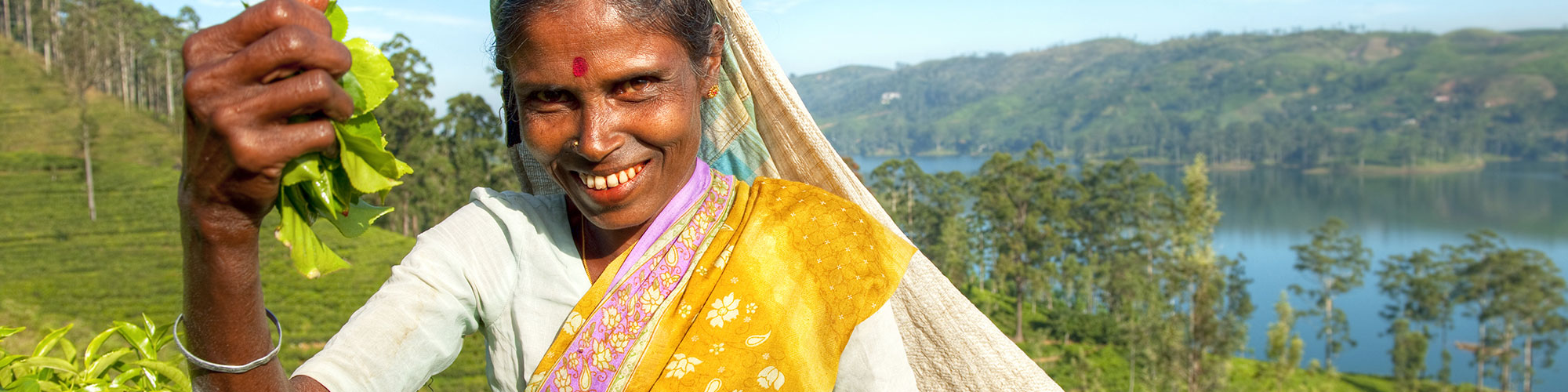 Tea Trails hike in Sri Lanka