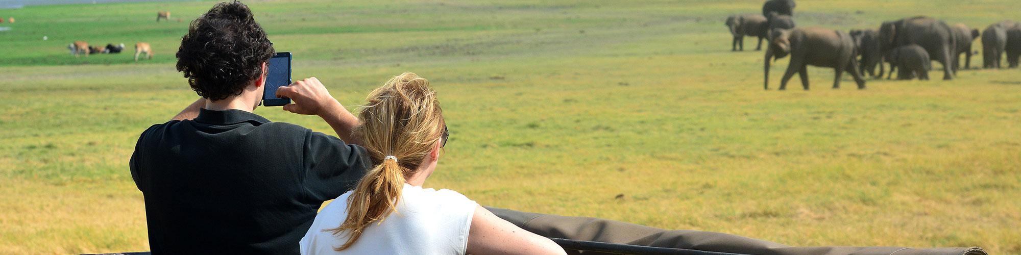 Minneriya safari from Kandy