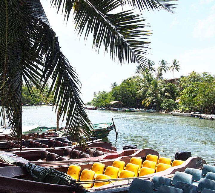 Sri Lanka, Boat ride, Madu Ganga river