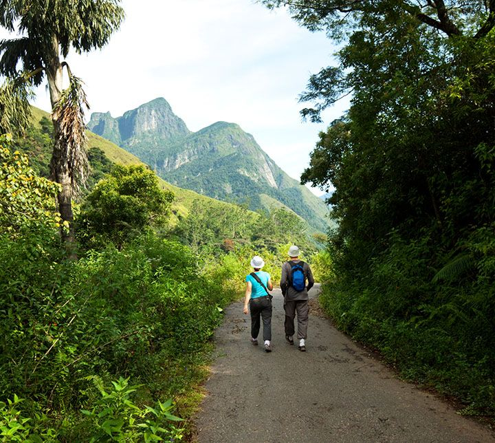 Sri Lanka, Guided trek, Forests