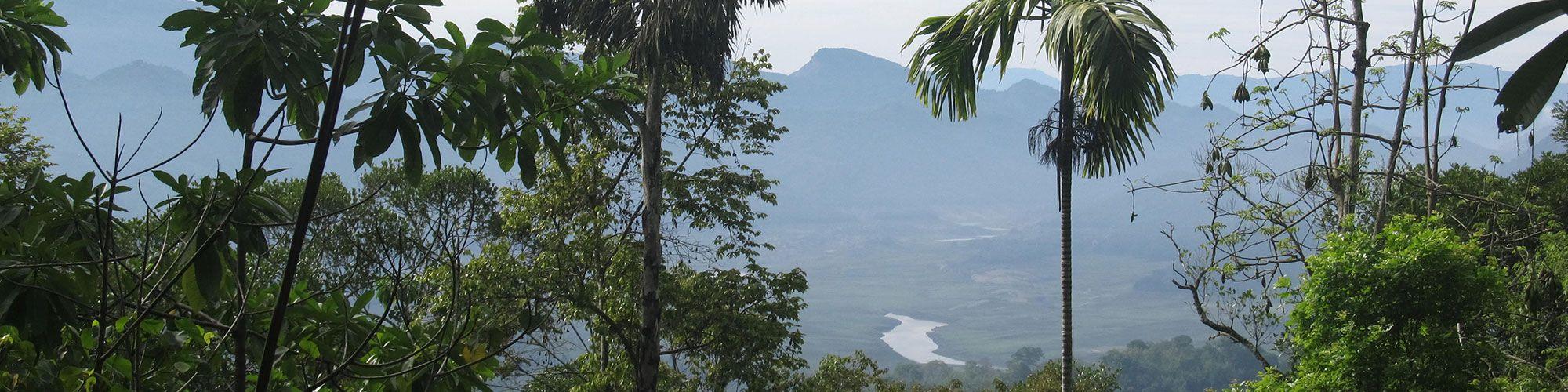 Sri Lanka, Hill Country, View