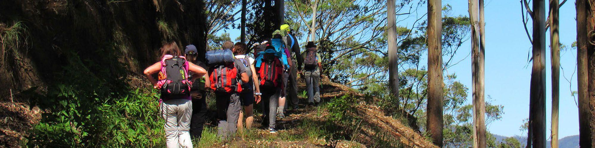 Sri Lanka, Trekking, Kitulgala, View