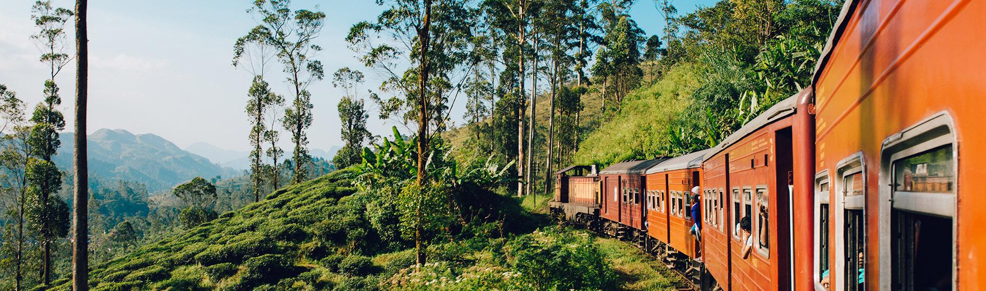 Sri Lanka, Train, Journey, Landscapes